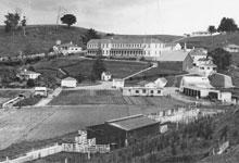 Rotoroa Island in 1960