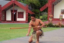 Waitangi Day at a marae