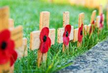a row of poppies with crosses on