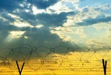a barbed wire fence with sunlight behind it