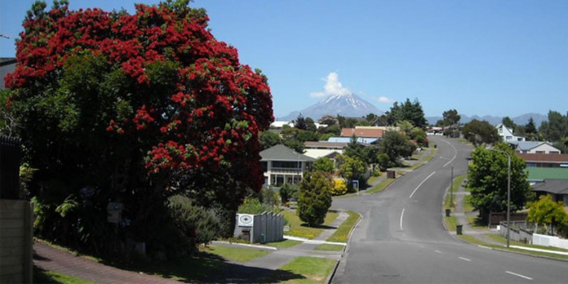 New Plymouth area