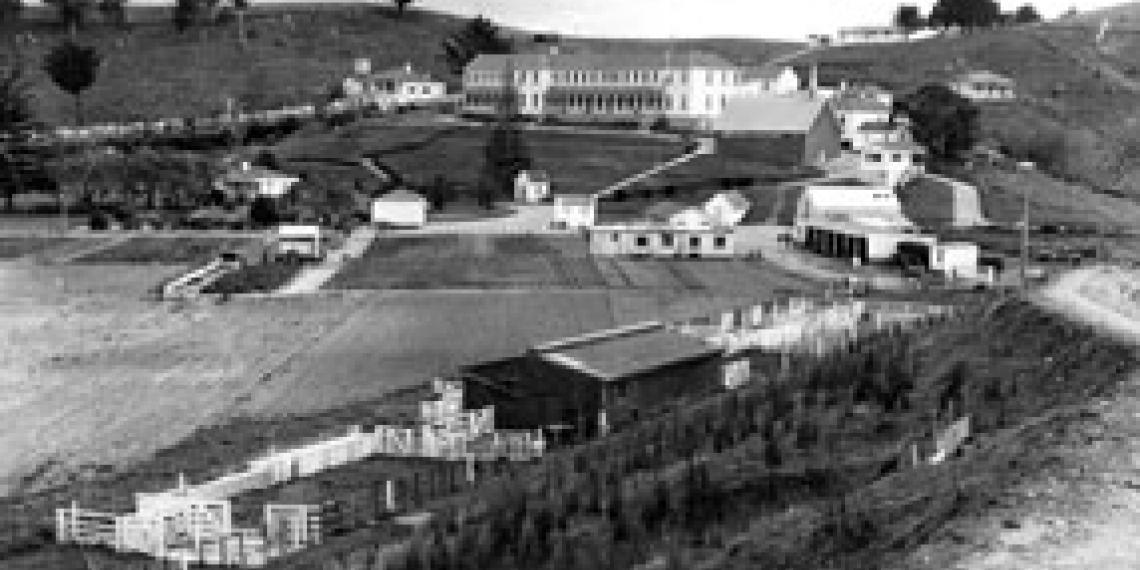 Rotorua Island rehabilitation centre