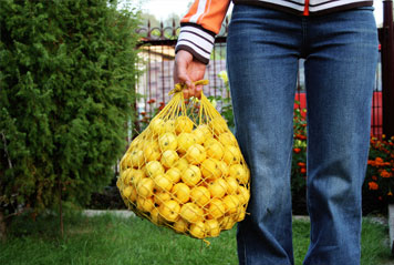 Farm worker holding a bag of fruit